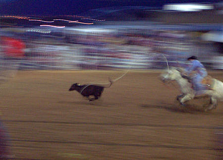 rodeo, santa fe, new mexico, june 18, 2003.