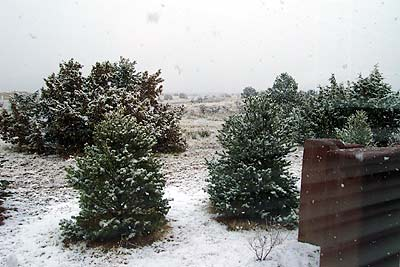 snow, santa fe, new mexico, february 20, 2003.
